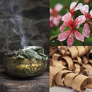 Eutopie No. 6 perfumy niszowe